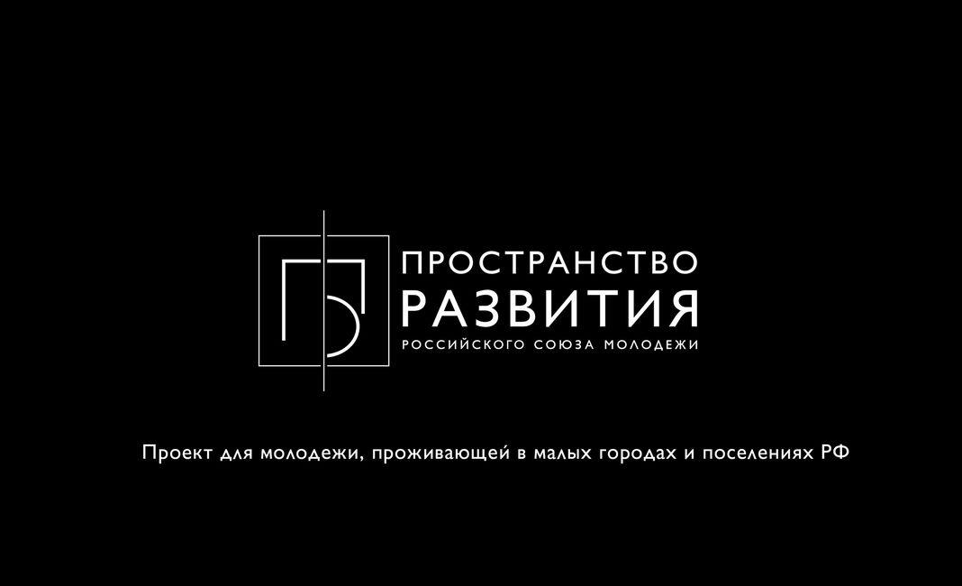 Картинки по запросу пространство развития проект рсм