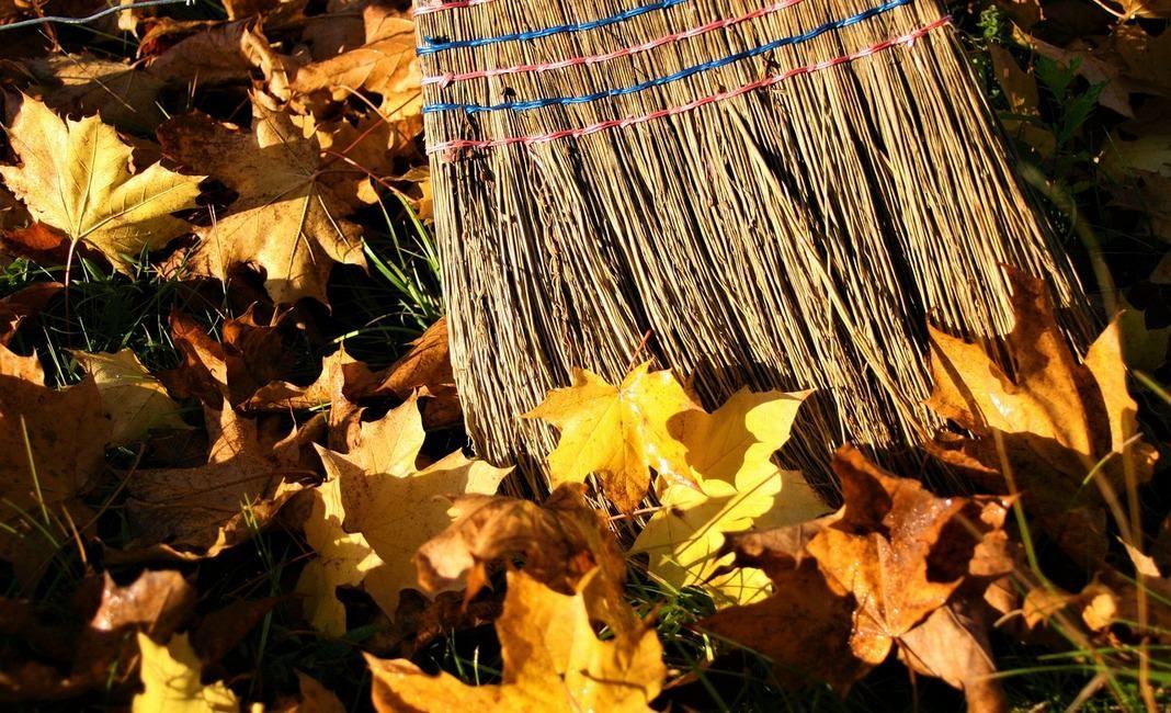 субботник, листья, уборка, метла, осень